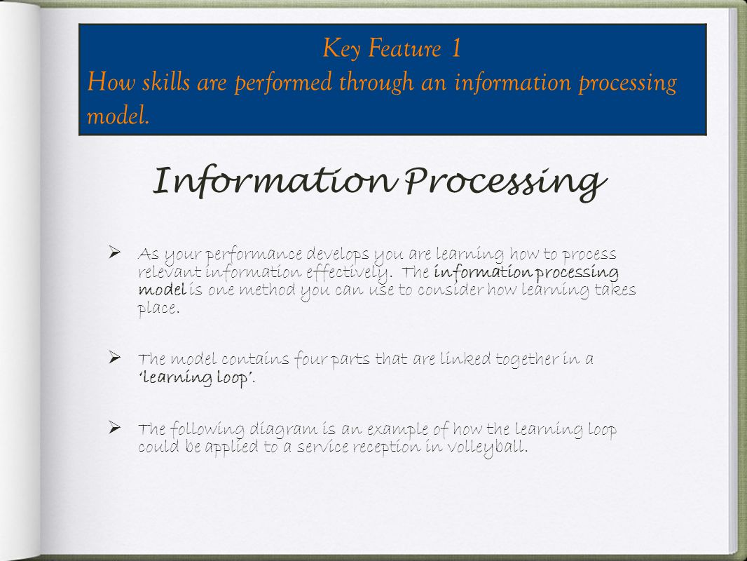 Information Processing As your performance develops you are learning how to process relevant information effectively.
