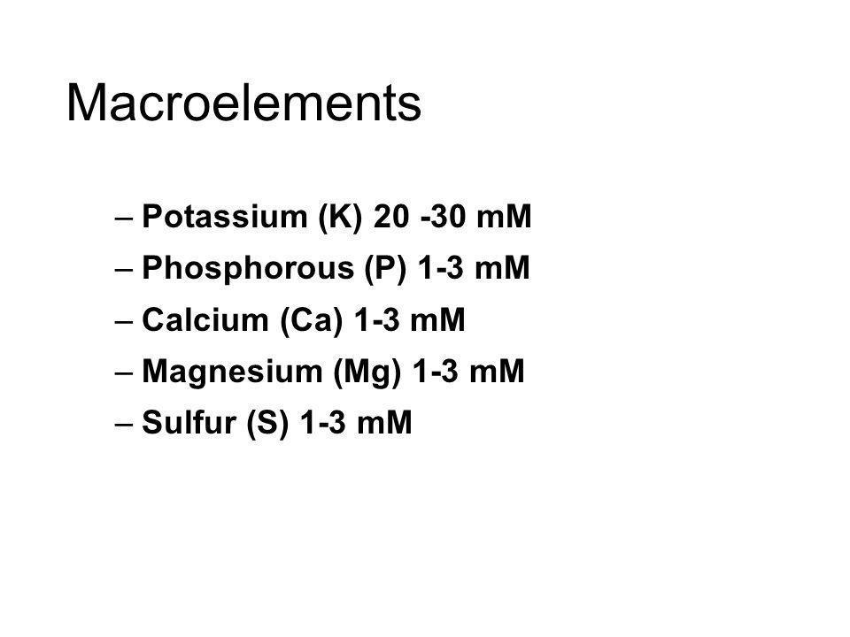 Macroelements –Potassium (K) 20 -30 mM –Phosphorous (P) 1-3 mM –Calcium (Ca) 1-3 mM –Magnesium (Mg) 1-3 mM –Sulfur (S) 1-3 mM
