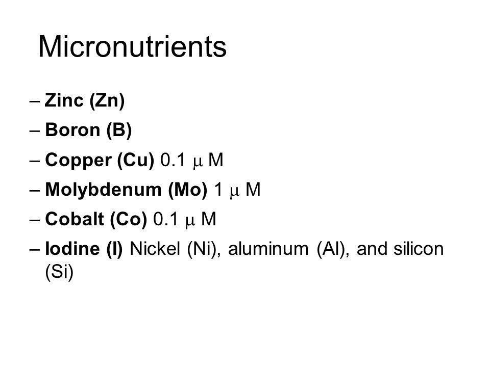 Micronutrients –Zinc (Zn) –Boron (B) –Copper (Cu) 0.1 M –Molybdenum (Mo) 1 M –Cobalt (Co) 0.1 M –Iodine (I) Nickel (Ni), aluminum (Al), and silicon (S
