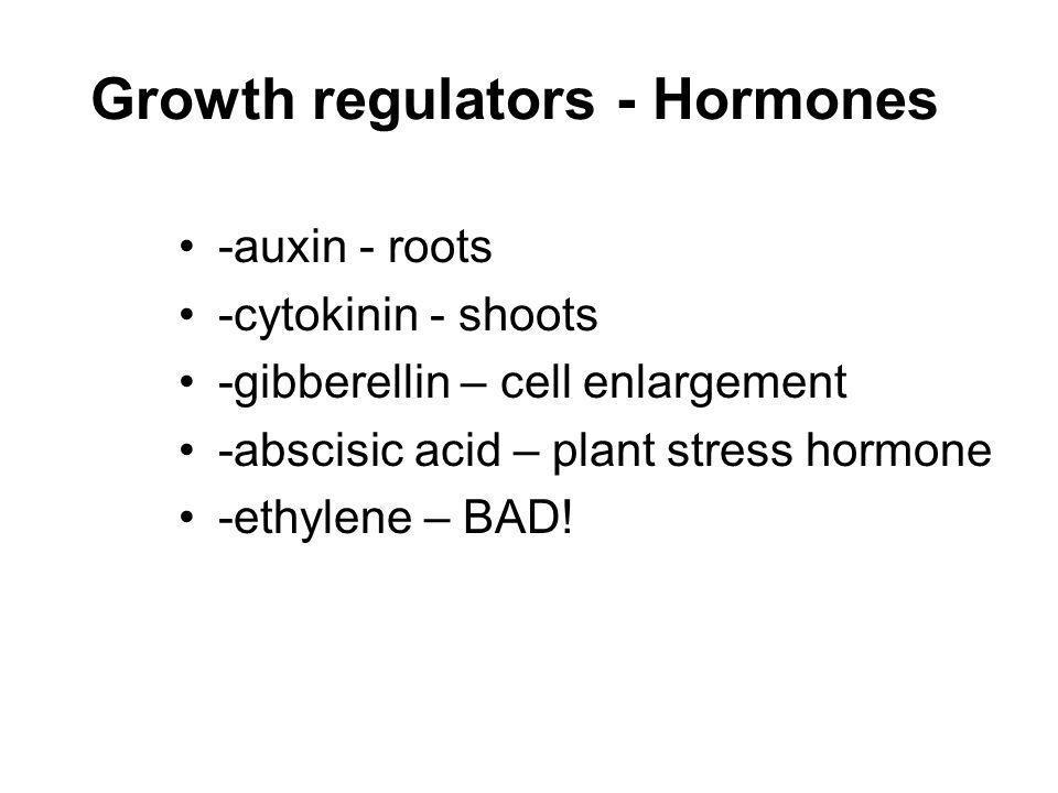 Growth regulators - Hormones -auxin - roots -cytokinin - shoots -gibberellin – cell enlargement -abscisic acid – plant stress hormone -ethylene – BAD!
