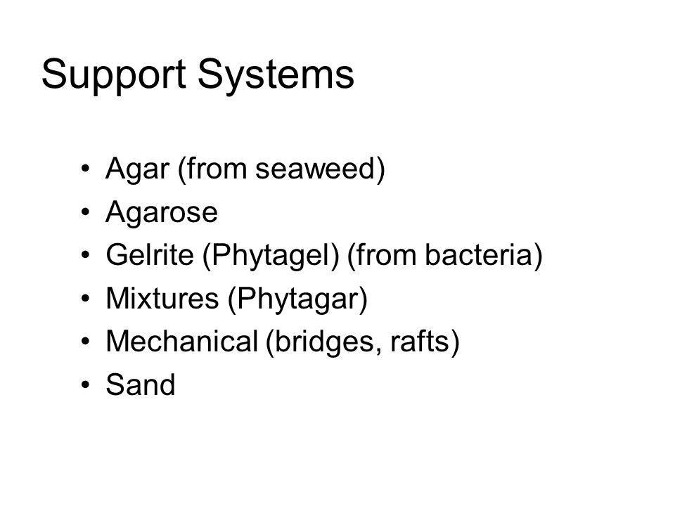 Support Systems Agar (from seaweed) Agarose Gelrite (Phytagel) (from bacteria) Mixtures (Phytagar) Mechanical (bridges, rafts) Sand