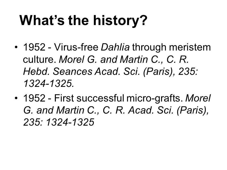 Whats the history? 1952 - Virus-free Dahlia through meristem culture. Morel G. and Martin C., C. R. Hebd. Seances Acad. Sci. (Paris), 235: 1324-1325.