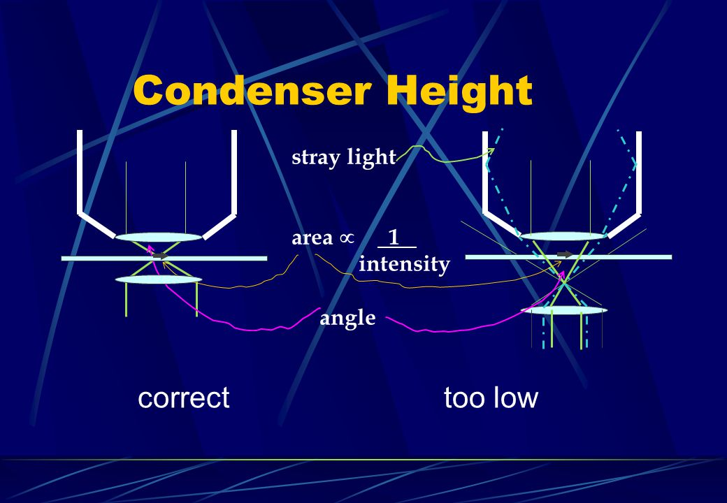 Condenser Height correct too low stray light area. 1. intensity angle