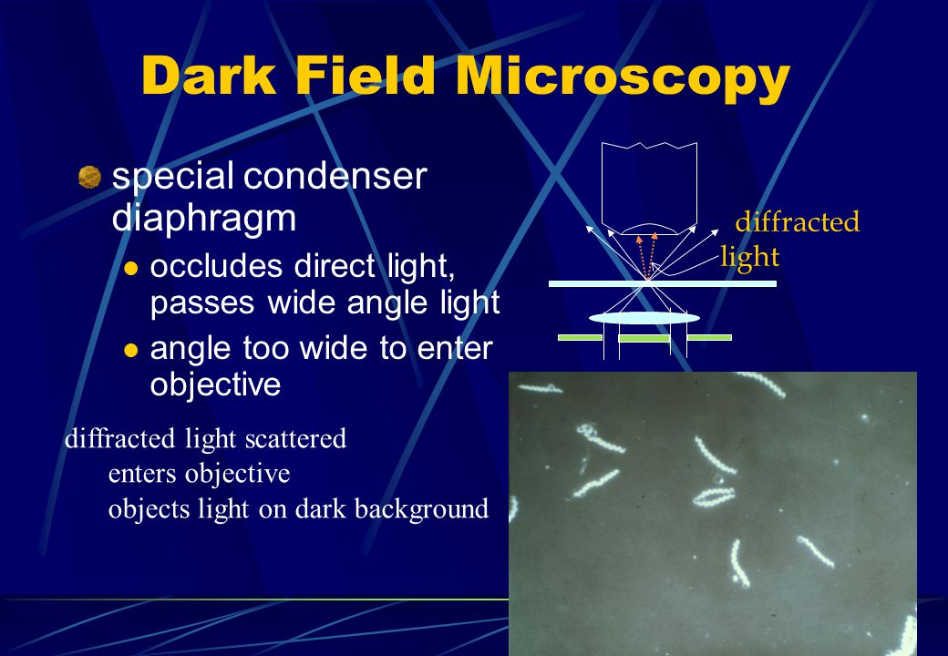 Dark Field Microscopy special condenser diaphragm occludes direct light, passes wide angle light angle too wide to enter objective diffracted light di