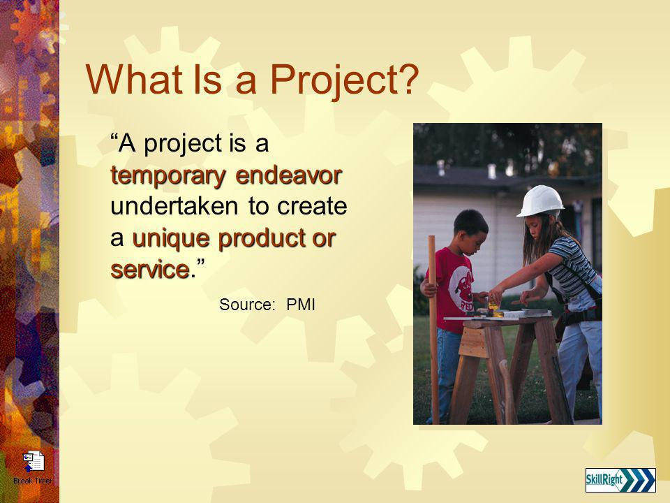 Project Manager The person who is responsible for the project and will be held accountable for its success or failure.