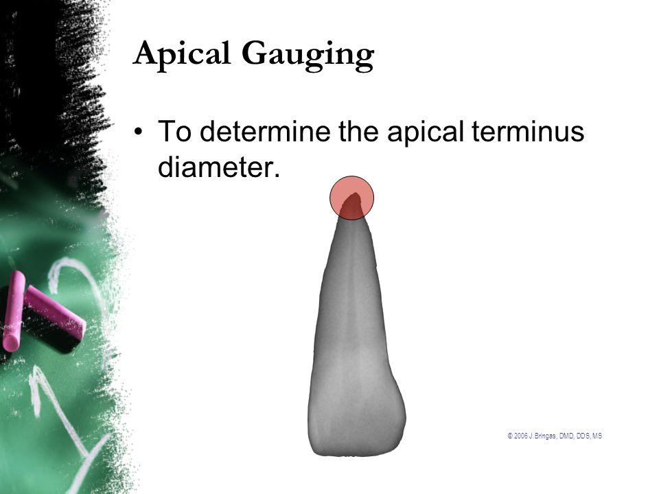 © 2006 J.Bringas, DMD, DDS, MS Apical Gauging To determine the apical terminus diameter.
