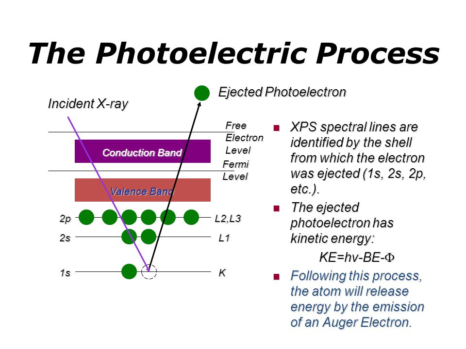XPS Chemical Shifts Chemical shifts of photoelectrons allow for interpretation and assignment of chemical bonding states.