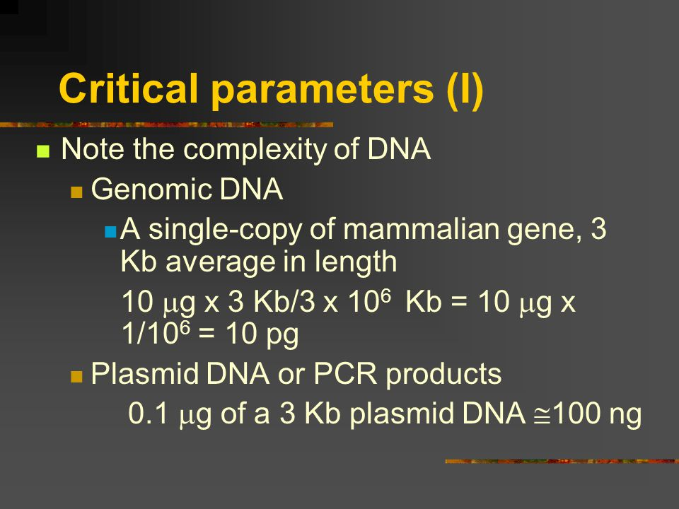Critical parameters (I) Note the complexity of DNA Genomic DNA A single-copy of mammalian gene, 3 Kb average in length 10 g x 3 Kb/3 x 10 6 Kb = 10 g