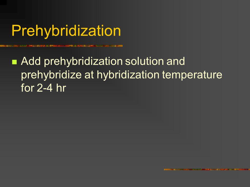 Prehybridization Add prehybridization solution and prehybridize at hybridization temperature for 2-4 hr