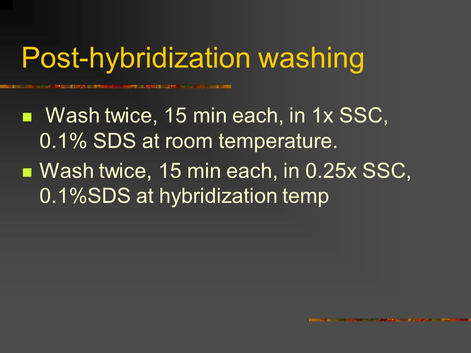 Post-hybridization washing Wash twice, 15 min each, in 1x SSC, 0.1% SDS at room temperature. Wash twice, 15 min each, in 0.25x SSC, 0.1%SDS at hybridi