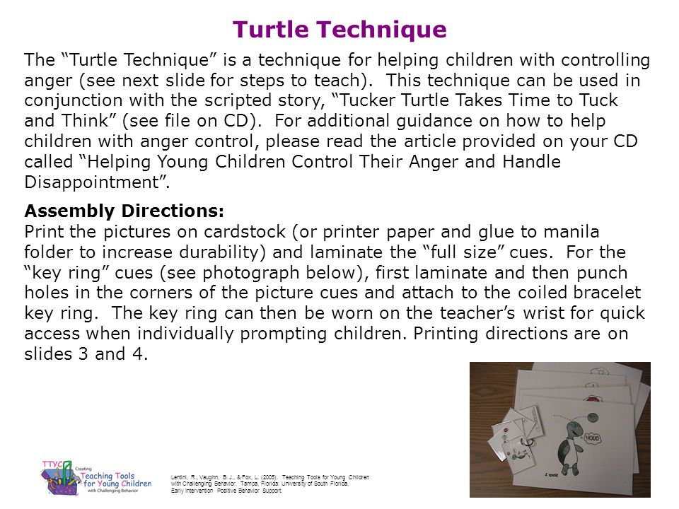 Turtle Technique The Turtle Technique is a technique for helping children with controlling anger (see next slide for steps to teach). This technique c