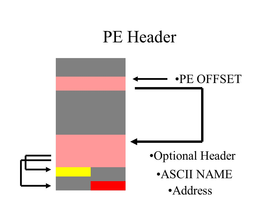 PE Header PE OFFSET Optional Header ASCII NAME Address