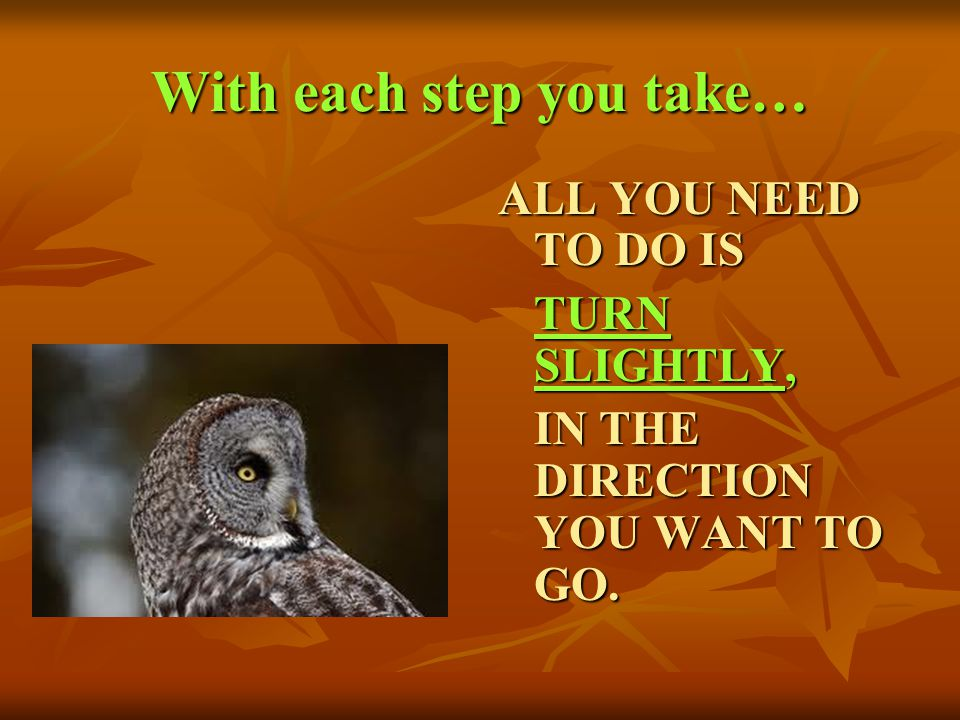 With each step you take… ALL YOU NEED TO DO IS TURN SLIGHTLY, IN THE DIRECTION YOU WANT TO GO.