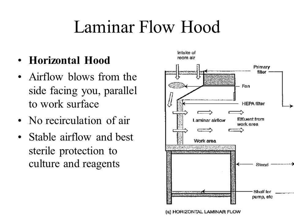 Laminar Flow Hood Horizontal Hood Airflow blows from the side facing you, parallel to work surface No recirculation of air Stable airflow and best ste