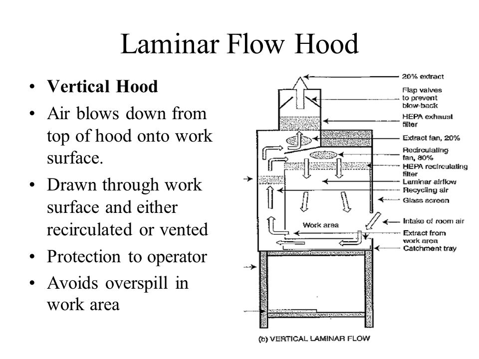 Laminar Flow Hood Vertical Hood Air blows down from top of hood onto work surface. Drawn through work surface and either recirculated or vented Protec