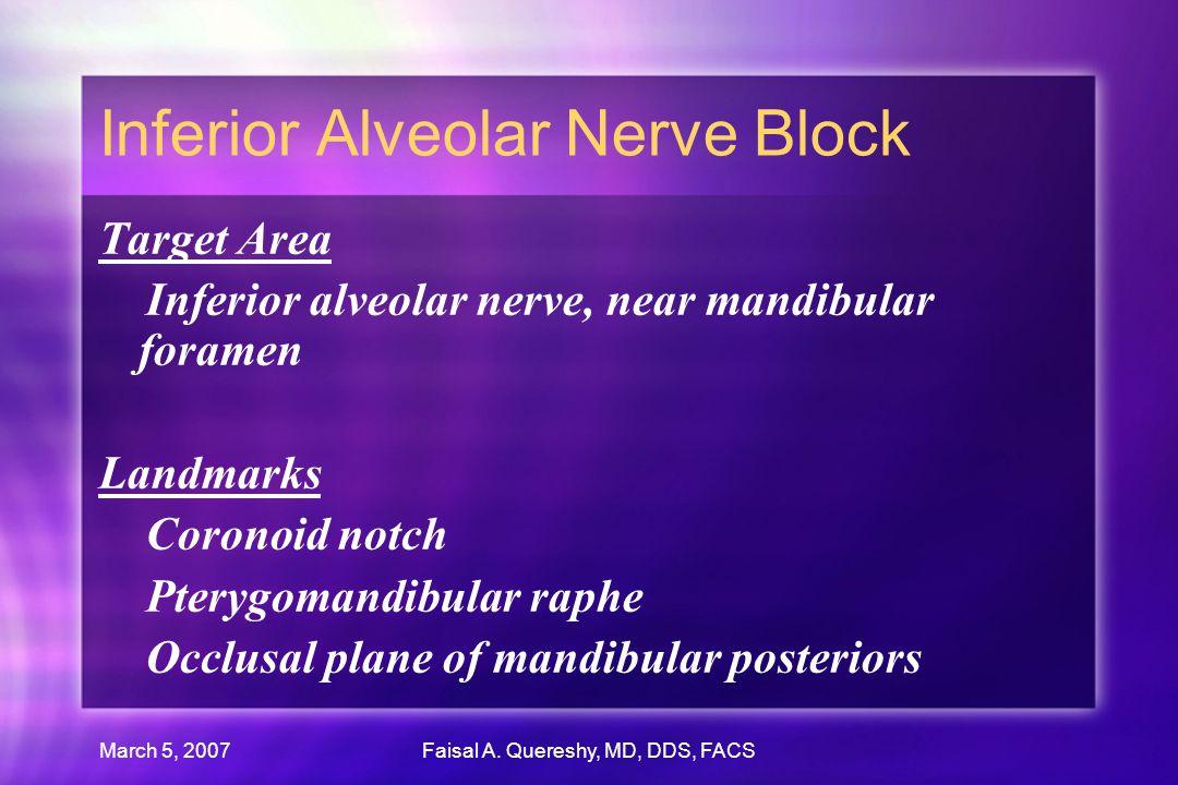 March 5, 2007Faisal A. Quereshy, MD, DDS, FACS Inferior Alveolar Nerve Block Target Area Inferior alveolar nerve, near mandibular foramen Landmarks Co