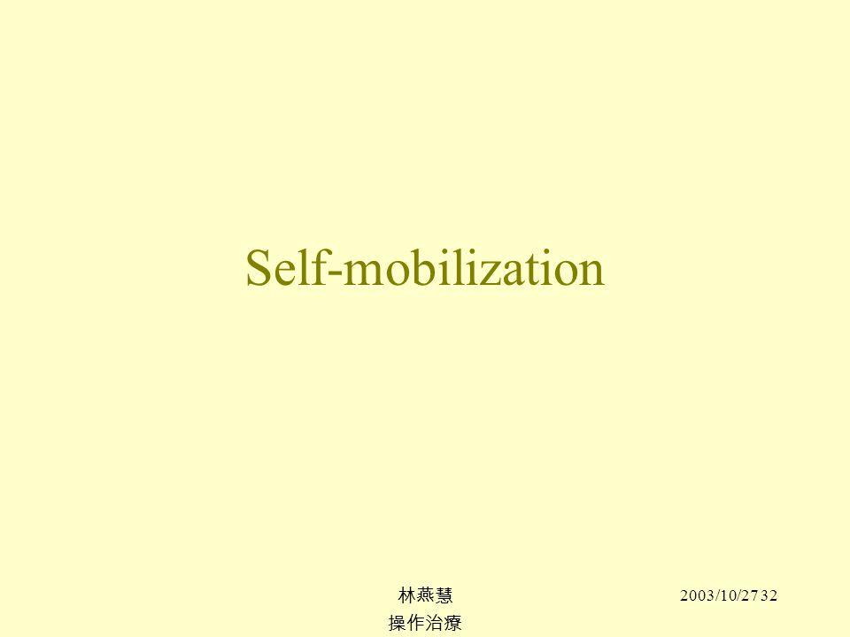2003/10/27 32 Self-mobilization