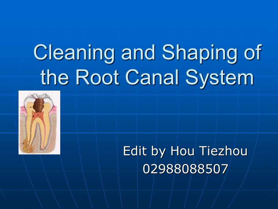 Cleaning and Shaping of the Root Canal System Edit by Hou Tiezhou 02988088507