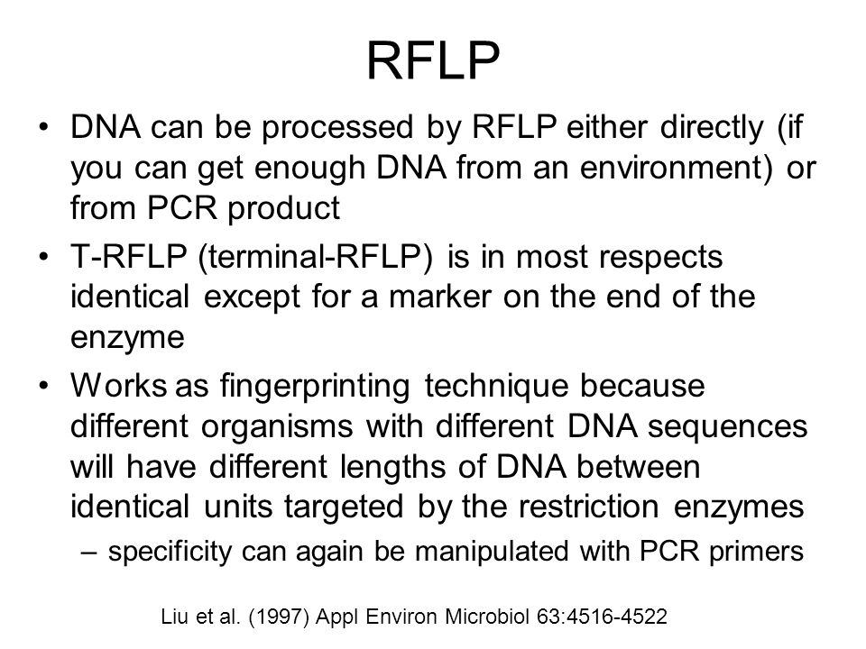 RFLP DNA can be processed by RFLP either directly (if you can get enough DNA from an environment) or from PCR product T-RFLP (terminal-RFLP) is in mos