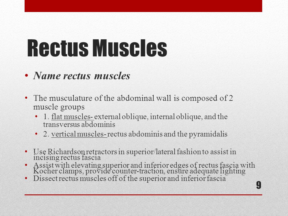 Rectus Muscles Name rectus muscles The musculature of the abdominal wall is composed of 2 muscle groups 1. flat muscles- external oblique, internal ob