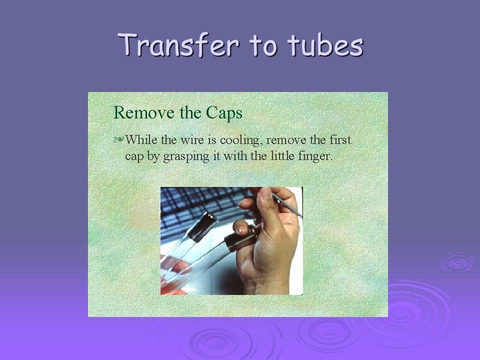 Transfer to tubes