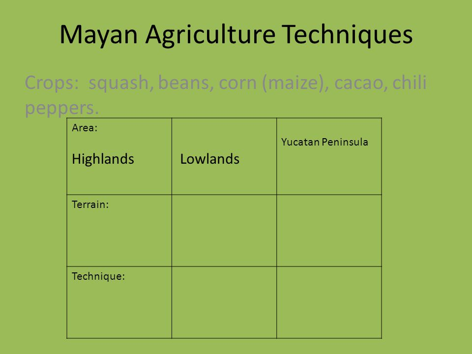 Mayan Agriculture Techniques Crops: squash, beans, corn (maize), cacao, chili peppers. Area: Highlands Lowlands Yucatan Peninsula Terrain: Technique: