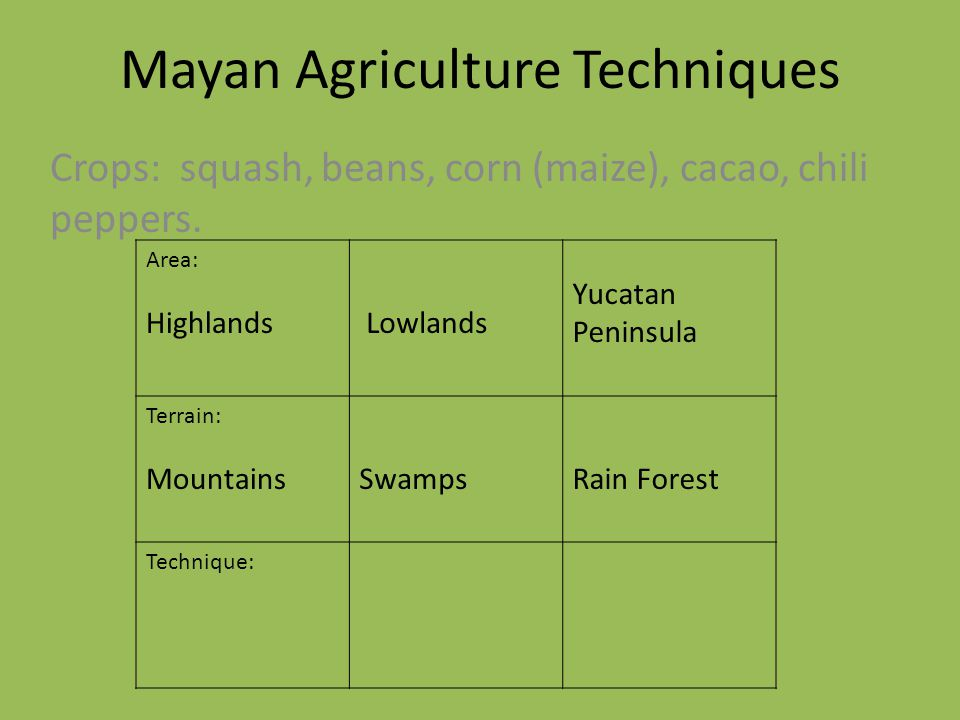 Mayan Agriculture Techniques Crops: squash, beans, corn (maize), cacao, chili peppers. Area: Highlands Lowlands Yucatan Peninsula Terrain: MountainsSw