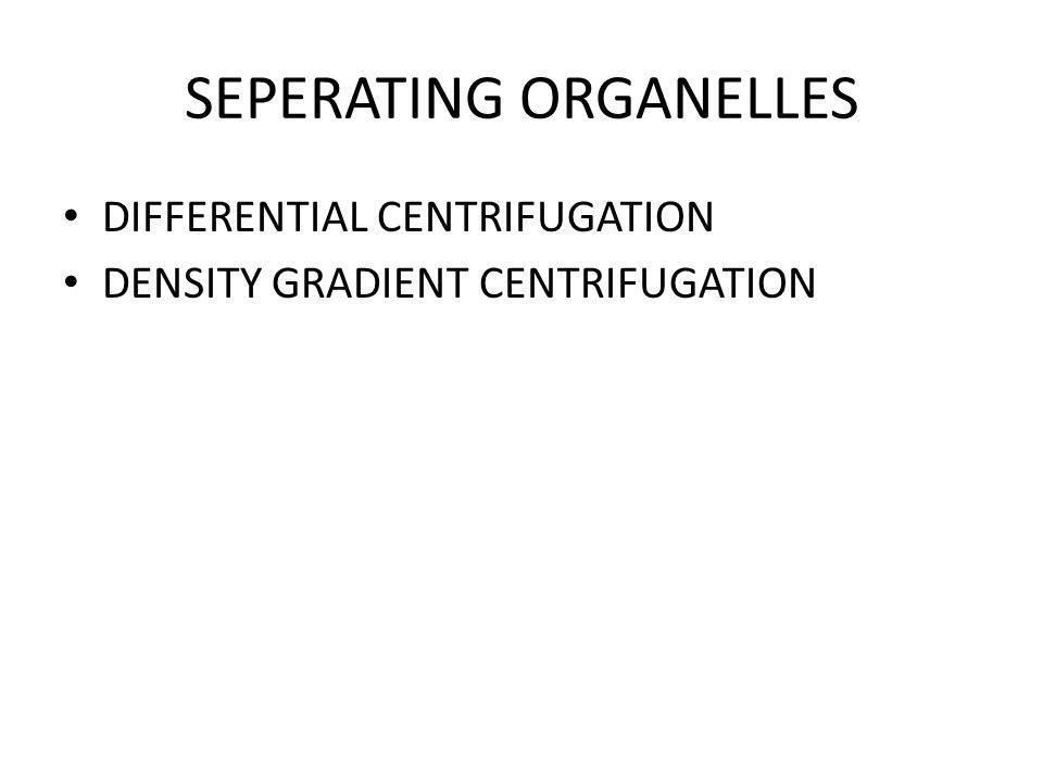 SEPERATING ORGANELLES DIFFERENTIAL CENTRIFUGATION DENSITY GRADIENT CENTRIFUGATION