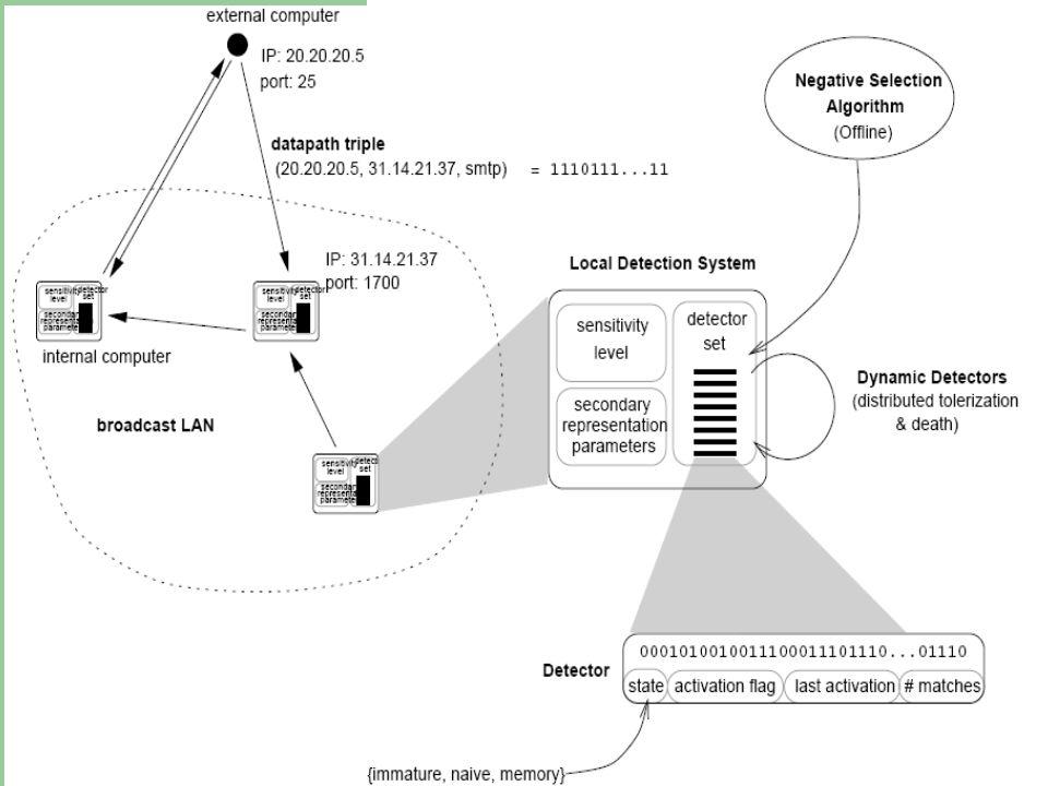 Intrusion Detection Techniques