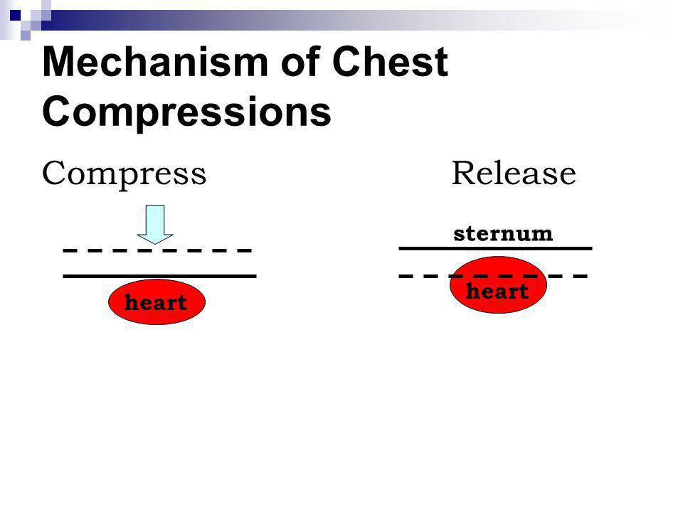 Mechanism of Chest Compressions CompressRelease heart sternum