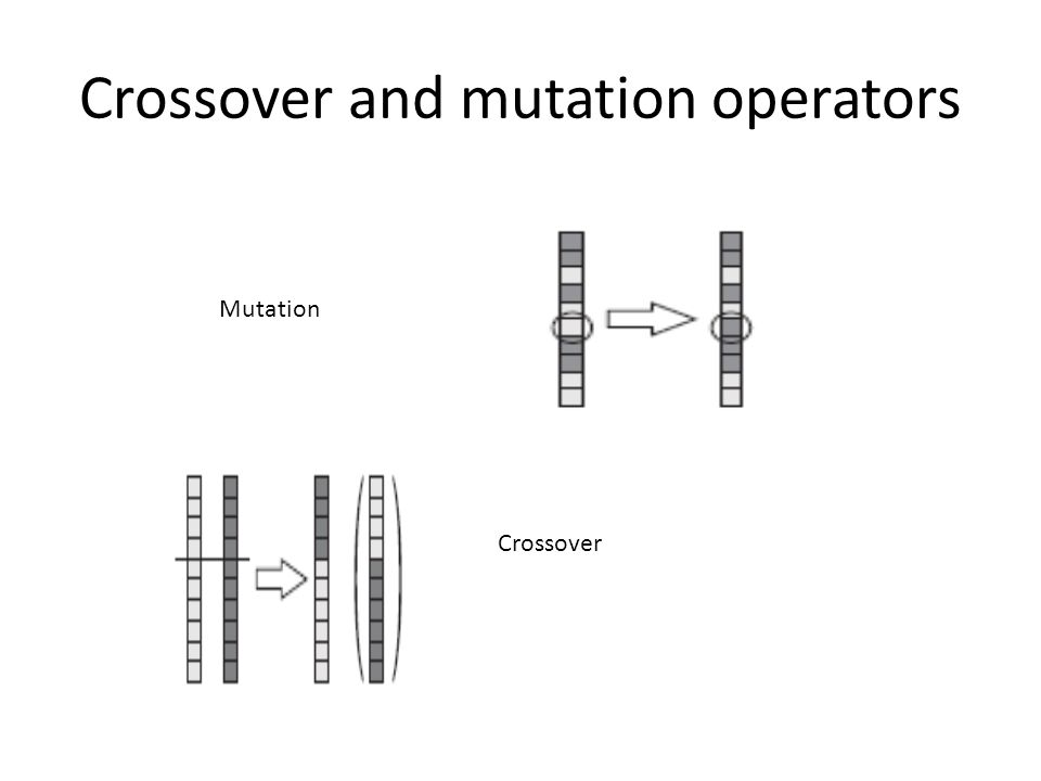 Crossover and mutation operators Mutation Crossover