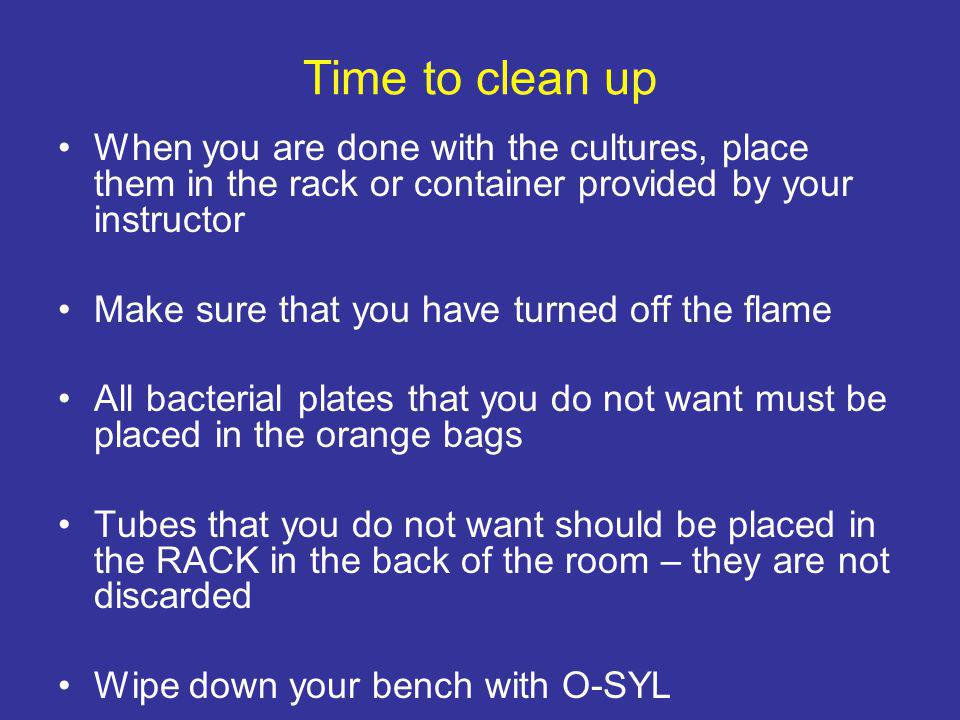 Time to clean up When you are done with the cultures, place them in the rack or container provided by your instructor Make sure that you have turned off the flame All bacterial plates that you do not want must be placed in the orange bags Tubes that you do not want should be placed in the RACK in the back of the room – they are not discarded Wipe down your bench with O-SYL