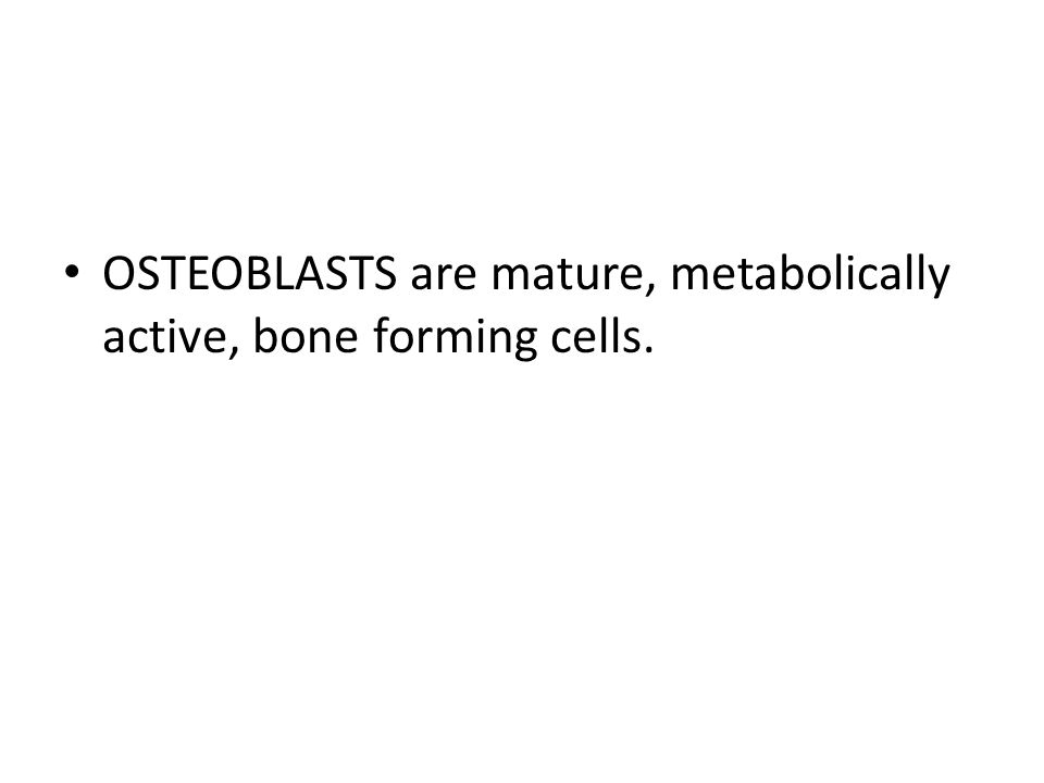 OSTEOBLASTS are mature, metabolically active, bone forming cells.