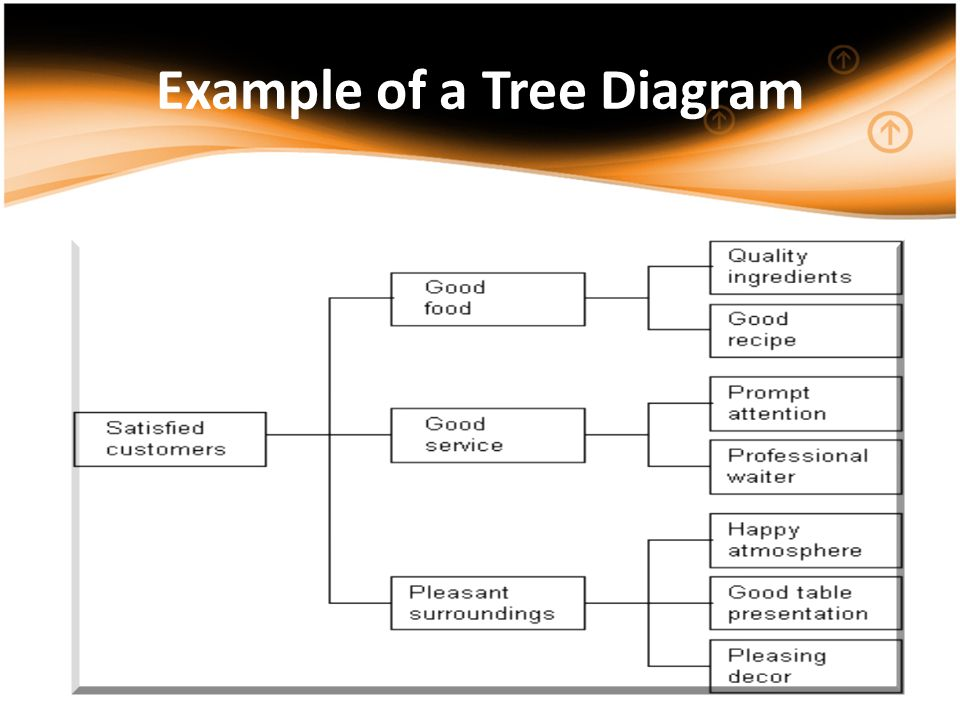 Example of a Tree Diagram