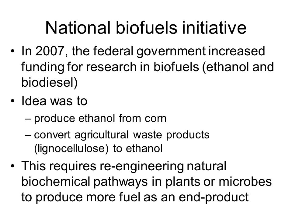 National biofuels initiative In 2007, the federal government increased funding for research in biofuels (ethanol and biodiesel) Idea was to –produce ethanol from corn –convert agricultural waste products (lignocellulose) to ethanol This requires re-engineering natural biochemical pathways in plants or microbes to produce more fuel as an end-product