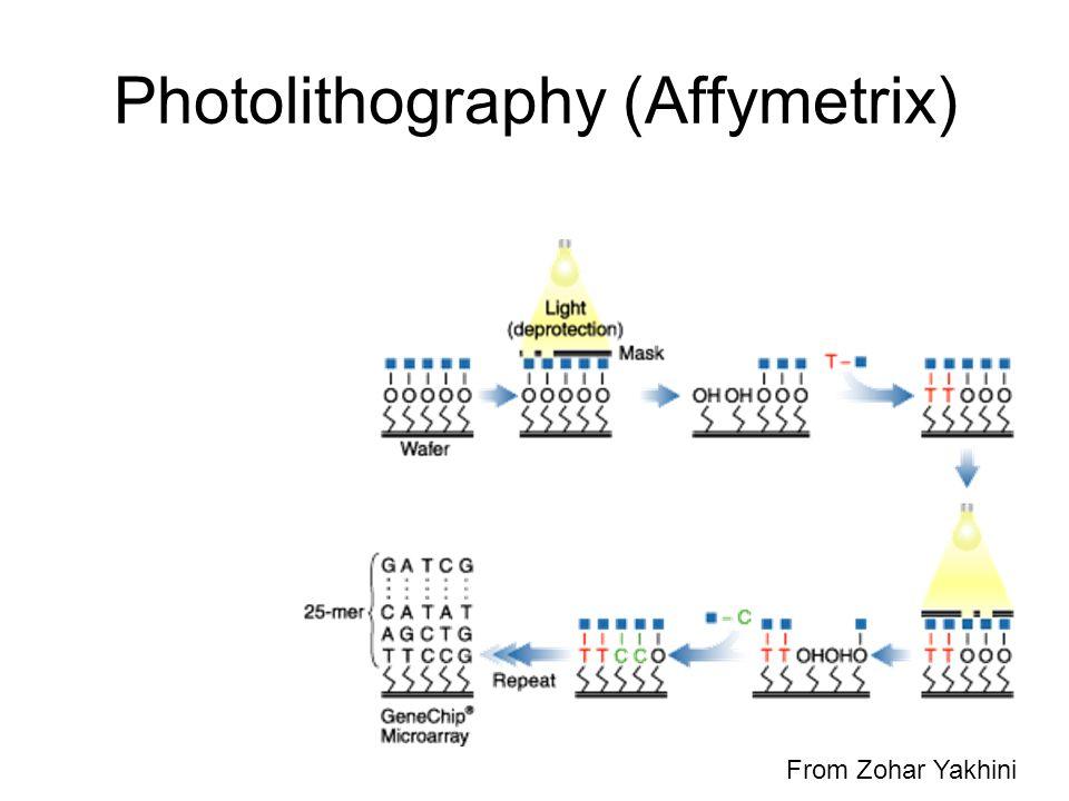 Photolithography (Affymetrix) From Zohar Yakhini