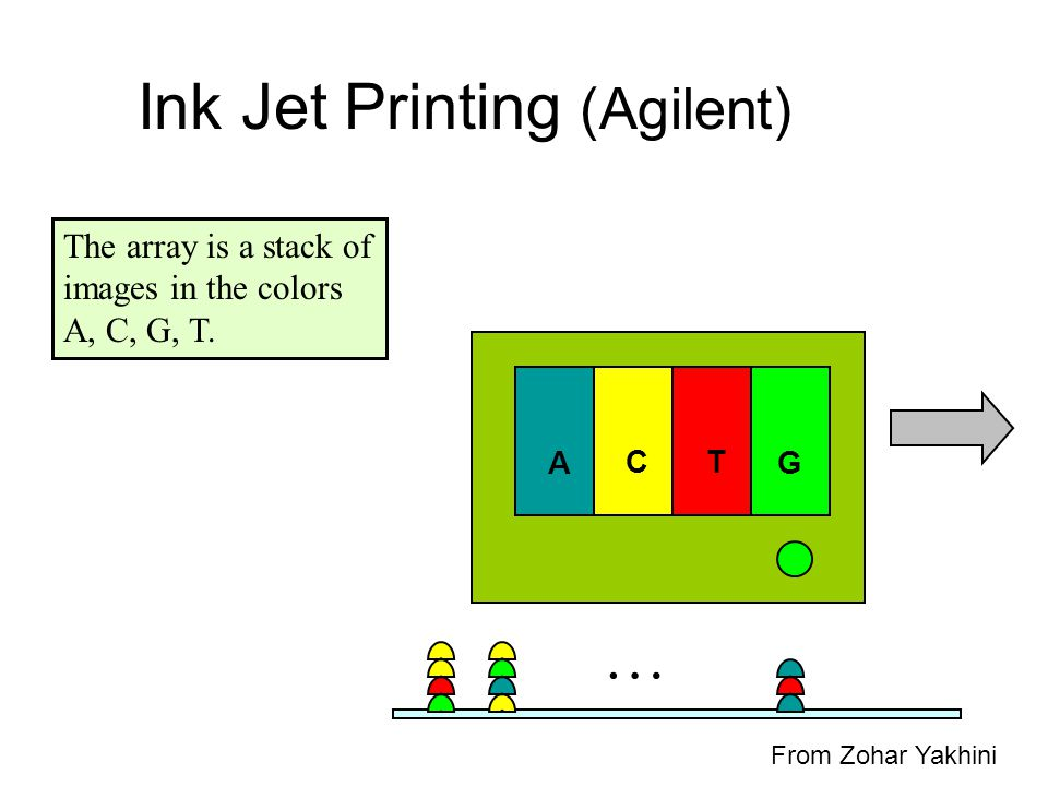 AG TC … Ink Jet Printing (Agilent) The array is a stack of images in the colors A, C, G, T. From Zohar Yakhini