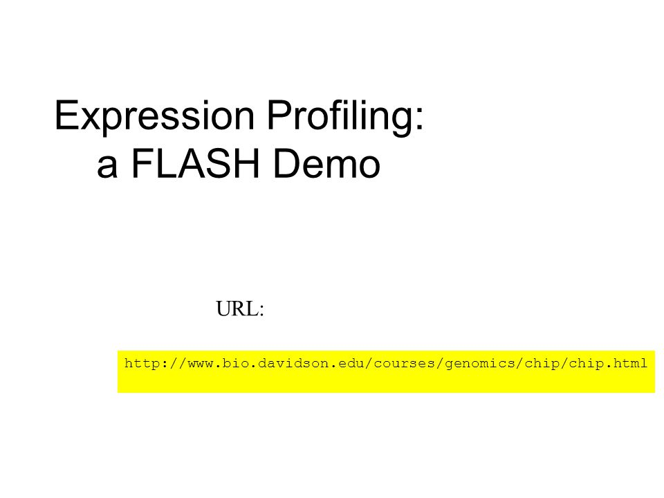 Expression Profiling: a FLASH Demo http://www.bio.davidson.edu/courses/genomics/chip/chip.html URL: