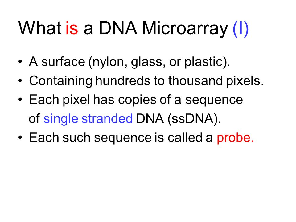 What is a DNA Microarray (I) A surface (nylon, glass, or plastic). Containing hundreds to thousand pixels. Each pixel has copies of a sequence of sing