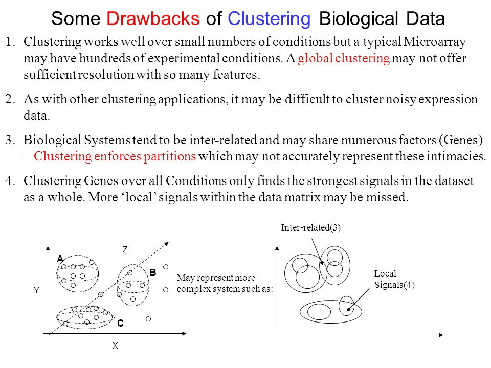Some Drawbacks of Clustering Biological Data 1.Clustering works well over small numbers of conditions but a typical Microarray may have hundreds of ex