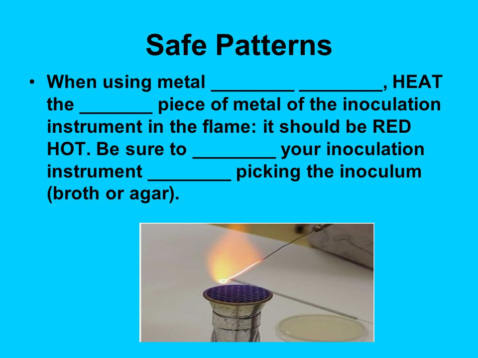 Safe Patterns To __________ a Petri plate: Lift one edge of the Petri plate cover to gain access to the culture medium.