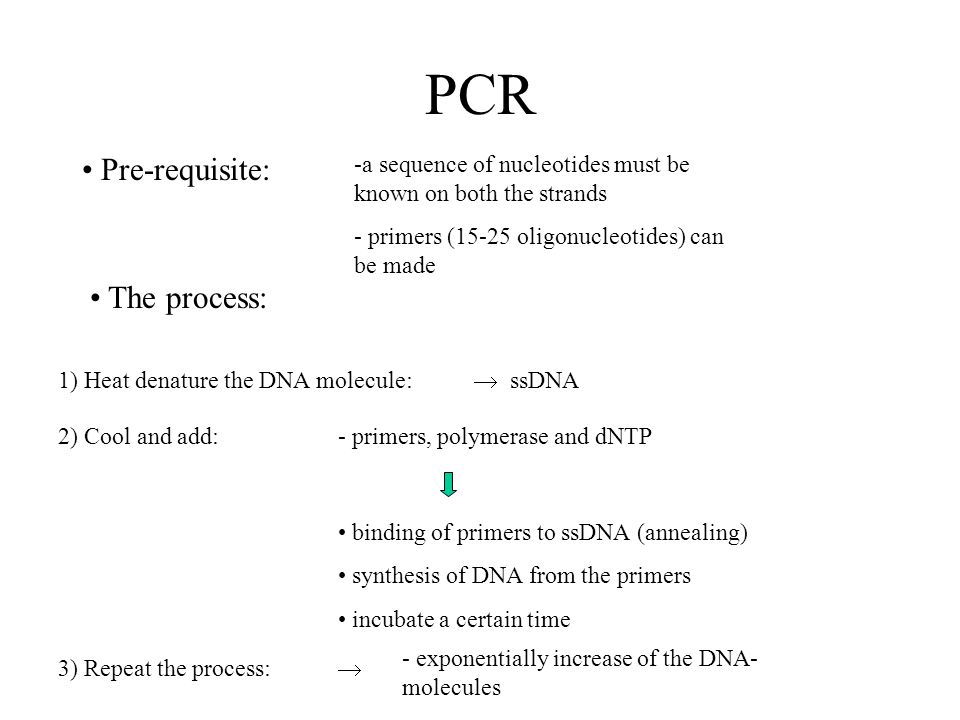 PCR Pre-requisite: -a sequence of nucleotides must be known on both the strands - primers (15-25 oligonucleotides) can be made The process: 1) Heat denature the DNA molecule: ssDNA 2) Cool and add:- primers, polymerase and dNTP binding of primers to ssDNA (annealing) synthesis of DNA from the primers incubate a certain time 3) Repeat the process: - exponentially increase of the DNA- molecules