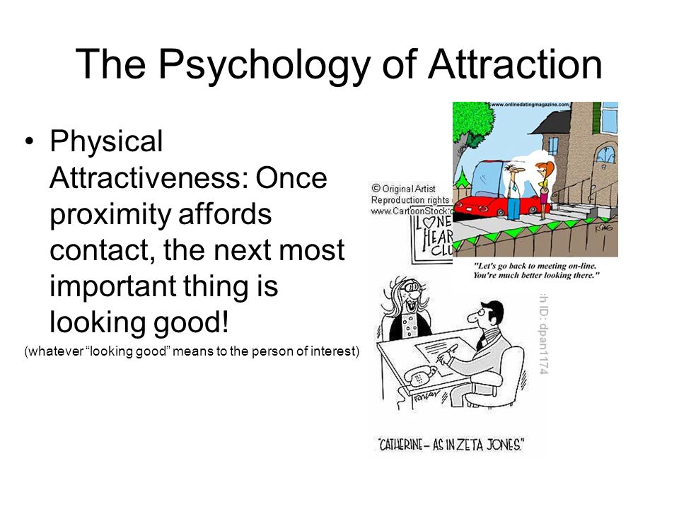 The Psychology of Attraction Physical Attractiveness: Once proximity affords contact, the next most important thing is looking good! (whatever looking