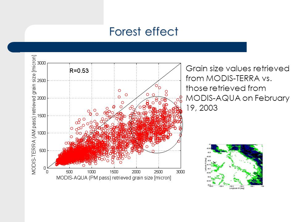 Forest effect Grain size values retrieved from MODIS-TERRA vs.