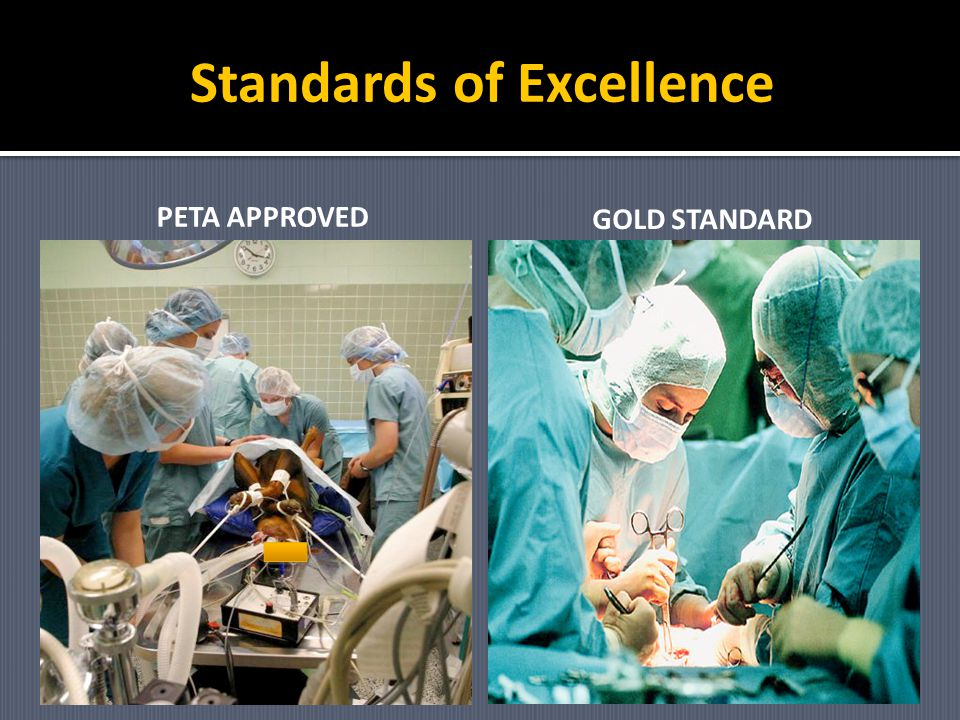 Standards of Excellence PETA APPROVED GOLD STANDARD