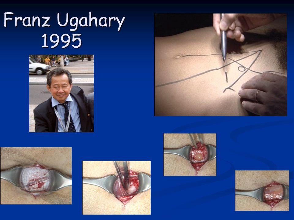 Franz Ugahary 1995 Franz Ugahary 1995