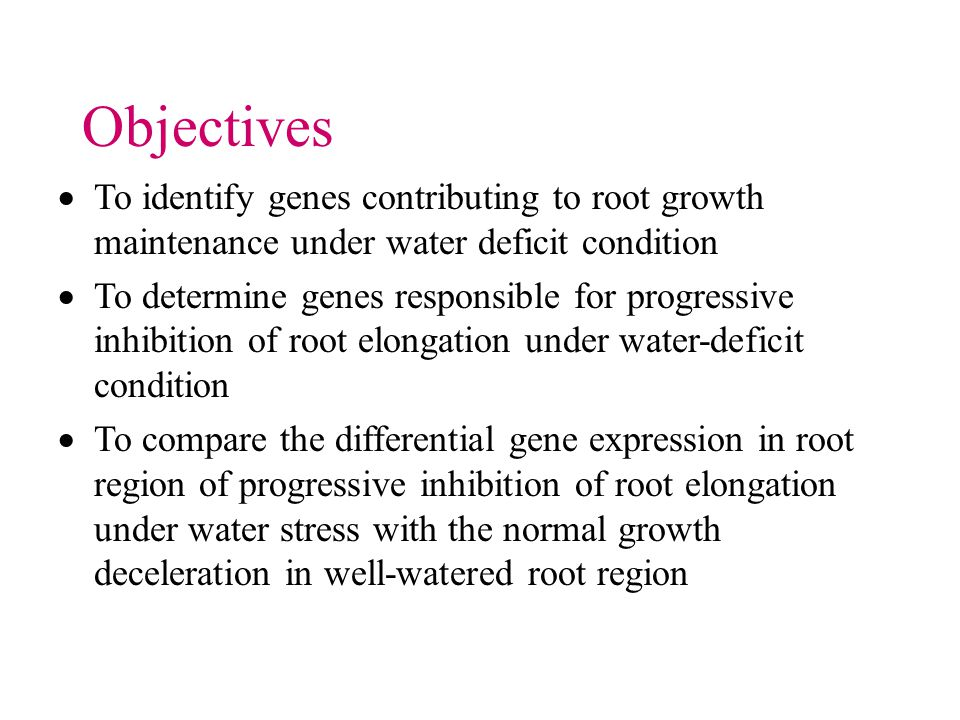 To identify genes contributing to root growth maintenance under water deficit condition To determine genes responsible for progressive inhibition of root elongation under water-deficit condition To compare the differential gene expression in root region of progressive inhibition of root elongation under water stress with the normal growth deceleration in well-watered root region Objectives