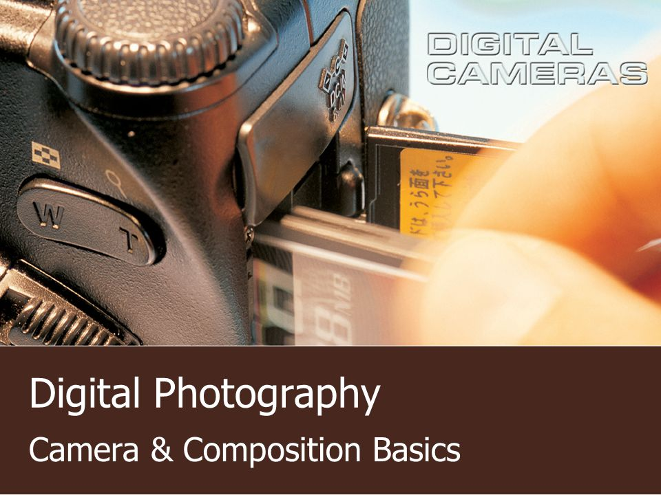 Digital Photography Camera & Composition Basics
