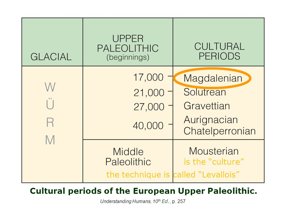 Understanding Humans, 10 th Ed., p. 257 Cultural periods of the European Upper Paleolithic.