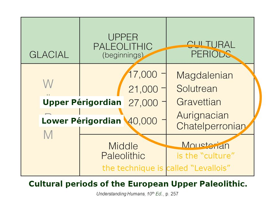 Understanding Humans, 10 th Ed., p.257 Cultural periods of the European Upper Paleolithic.